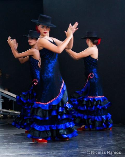 Flamencos Dos