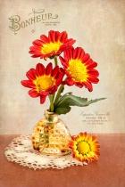 Parfumerie Des Fleurs