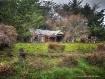 Little House in t...