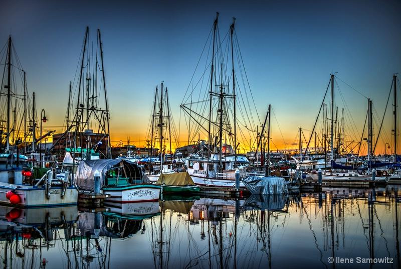 Marina at Fisherman's Terminal