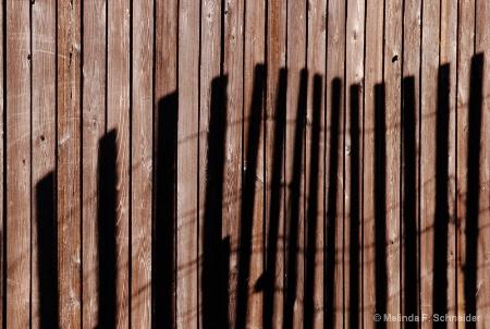 Shadow Fencing