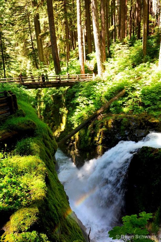 Over the Falls - ID: 14797496 © Dawn Schwack