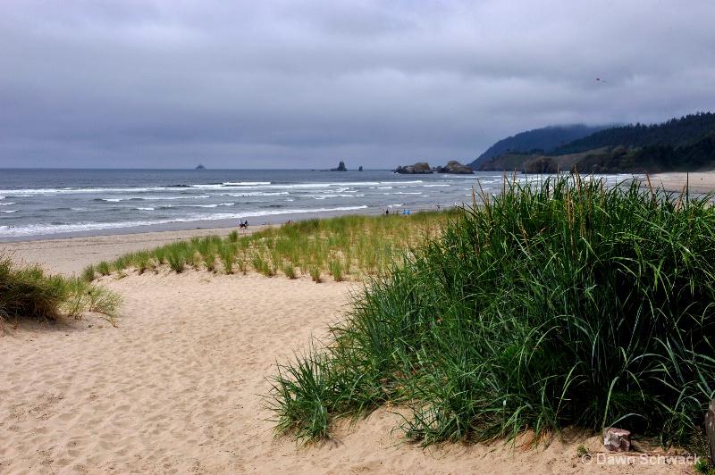 Dune View - ID: 14797503 © Dawn Schwack