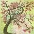 © Mayra Thompson PhotoID # 14799725: apple blossom