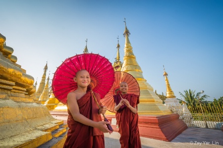 Novices from Myanmar