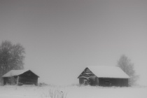 Barns In Snow Storm