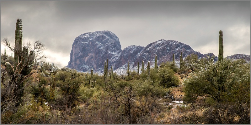Snow in the Desert - ID: 14810227 © Kelly Pape