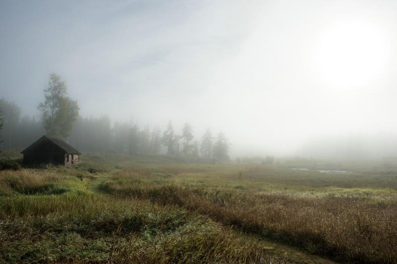 misty morning -    larry citra - ID: 14813893 © Larry J. Citra
