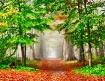 Misty Autumn Fore...