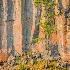 2loan tree on the ledge  spahats creek -    larry c - ID: 14814506 © Larry J. Citra