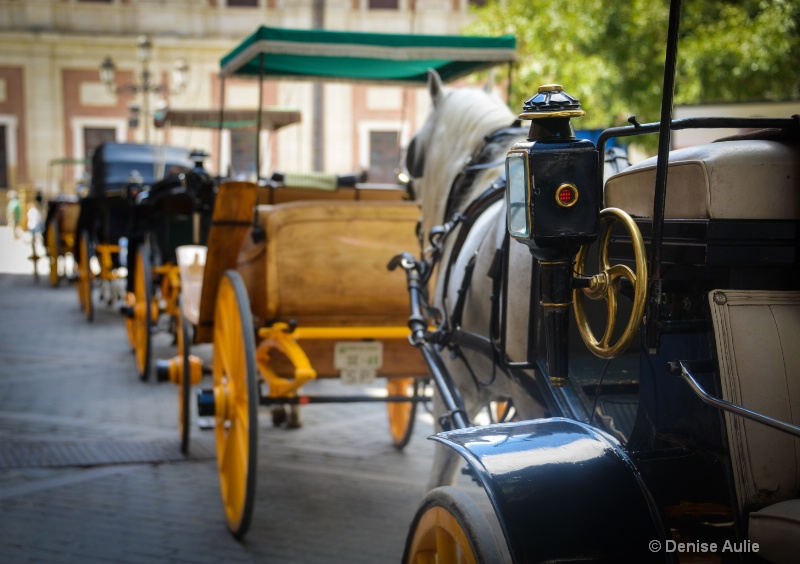 Carriages in Granada - ID: 14816927 © Denise Aulie