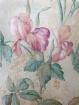 Iris Wallpaper 1