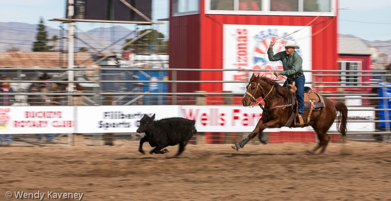 A Head Start -Calf Roping - ID: 14821314 © Wendy Kaveney