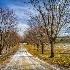 2Shelburne, Vermont - ID: 14823935 © Fran  Bastress