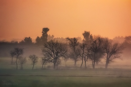 Potohar Dawn