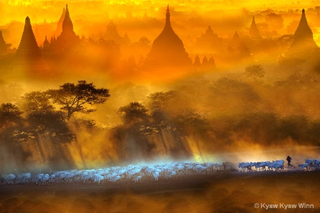 Golden Land, Myanmar