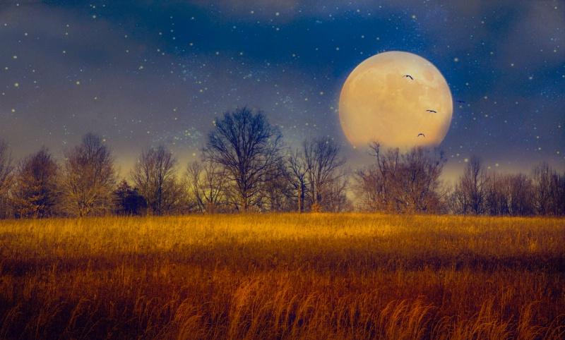 Struck by the Moon - ID: 14825870 © John Rivera