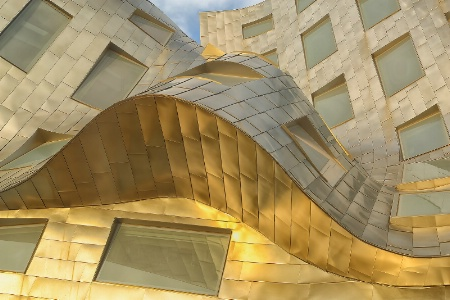 Frank Gehry Las Vegas