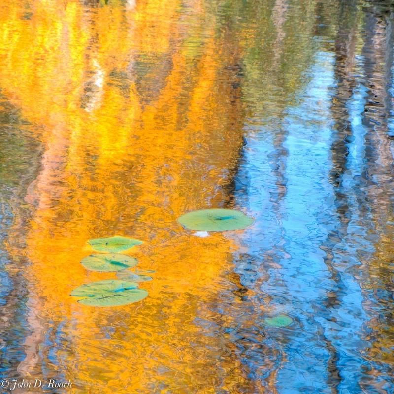 A Tribute to Monet - ID: 14830196 © John D. Roach