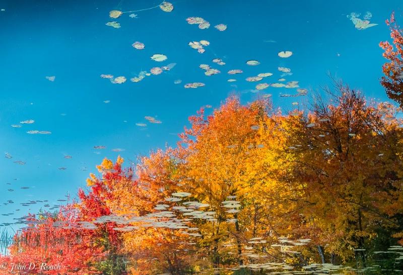 Reflections of Autumn - ID: 14830197 © John D. Roach