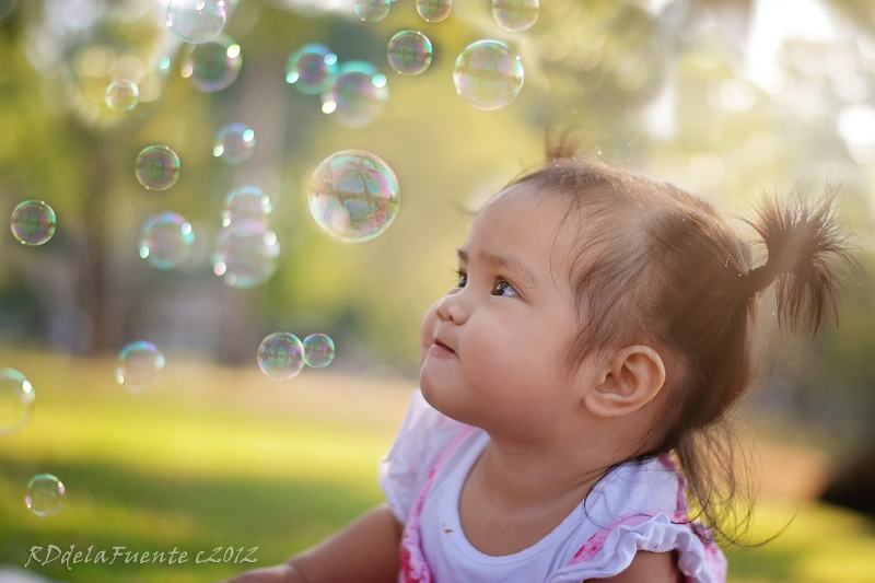 The One Bubble
