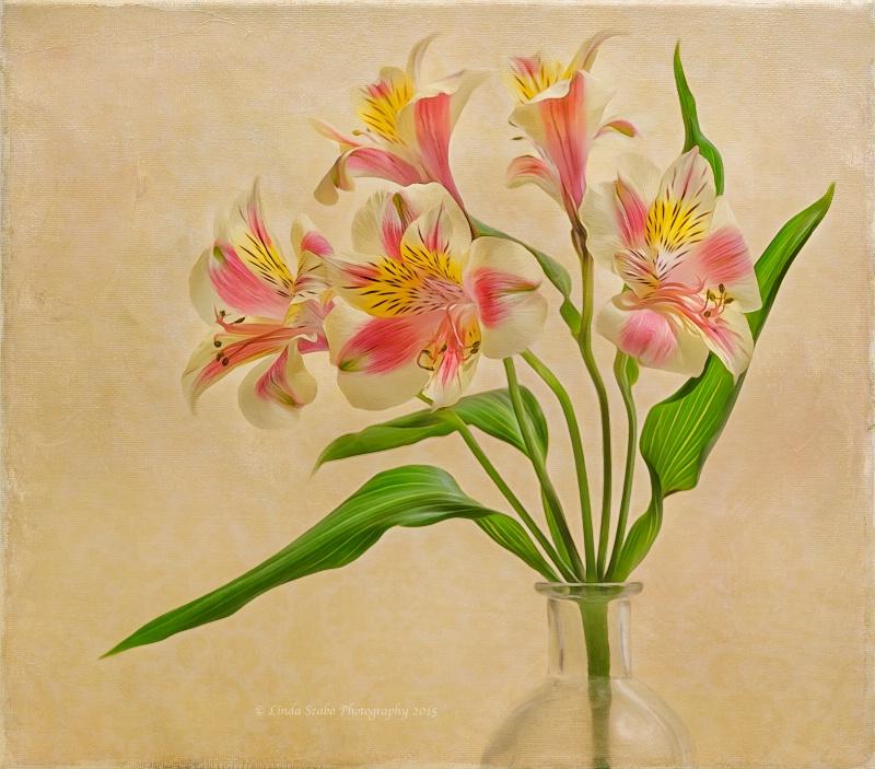 Dancing Lilies