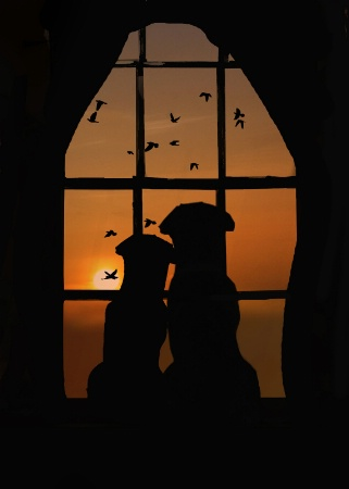 Pupppy Love
