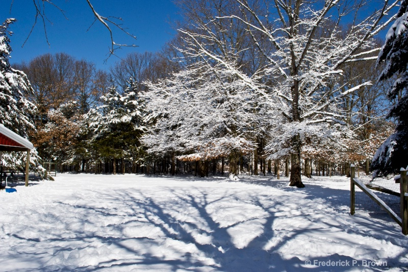 Snow and Shadow - ID: 14845728 © Frederick P. Brown