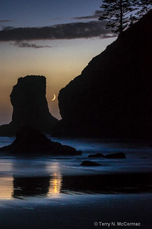 """Goodnight Moon"" - ID: 14853209 © TERRY N. MCCORMAC"