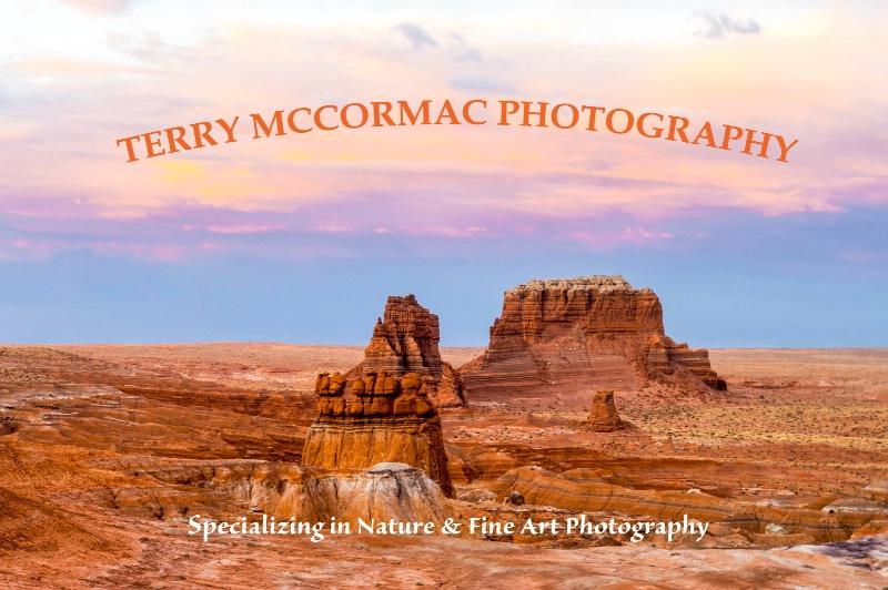 - ID: 14866837 © TERRY N. MCCORMAC