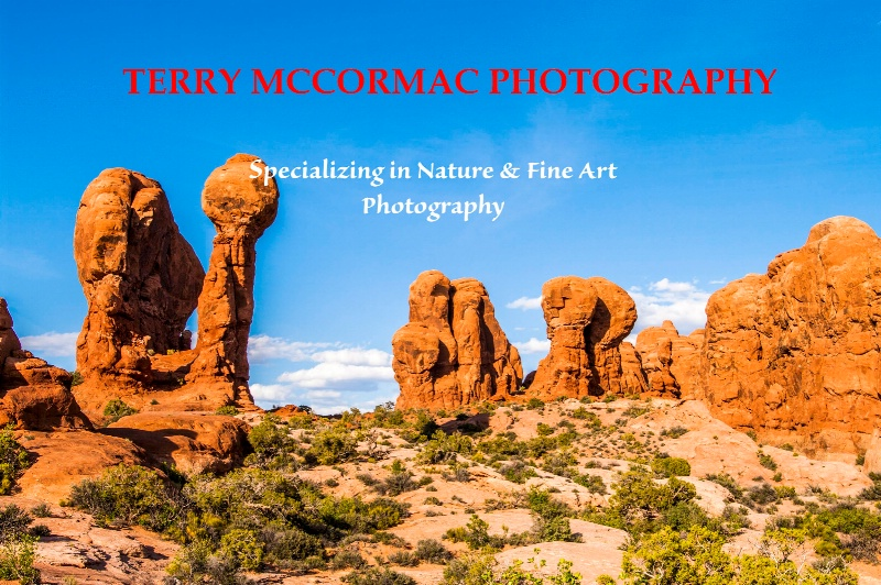 - ID: 14866844 © TERRY N. MCCORMAC