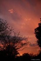 Thundershower n' Sunset