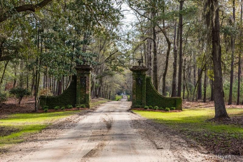 Plantation in South Carolina - ID: 14871896 © Larry Heyert