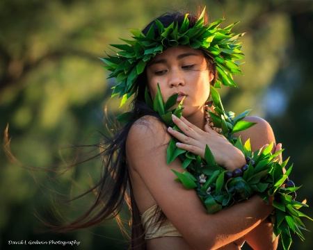 Hula Photo Shoot