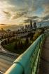 ~Seattle Sunset~