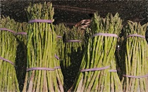 March of the Asparagus (in April)
