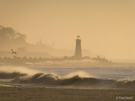 Walton Lighthouse Morning Fog