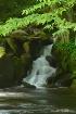 Mannis Falls