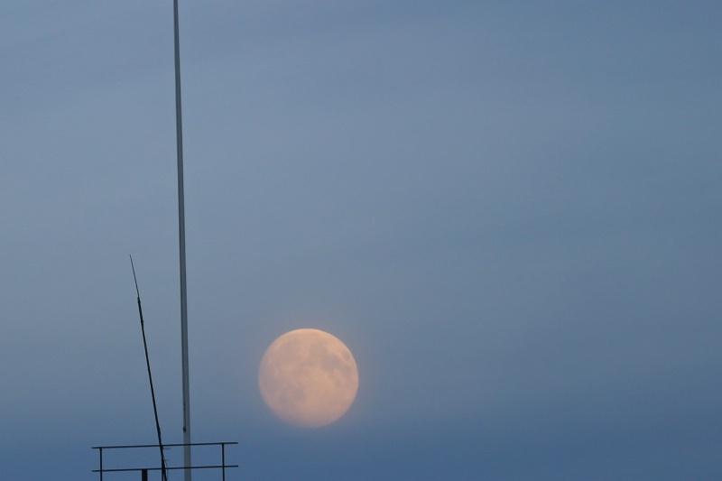 Moon Game - ID: 14904691 © Ilir Dugolli