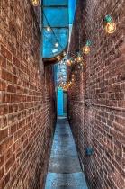 Alley Vision