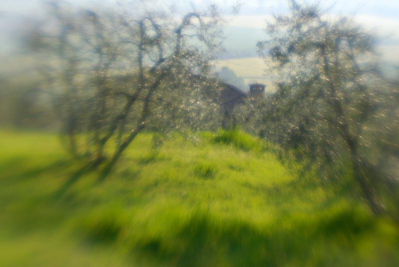 Tuscany - ID: 14918156 © Nora Odendahl