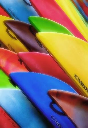 Kayaks or canoes?