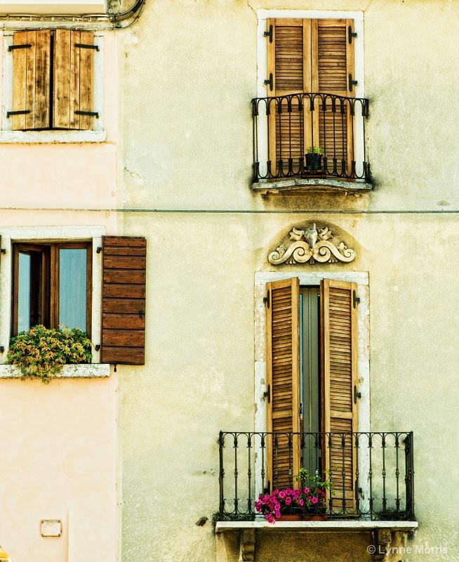 Window's and Doors