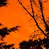 © Frederick P. Brown PhotoID# 14927760: Fire in the sky-2394