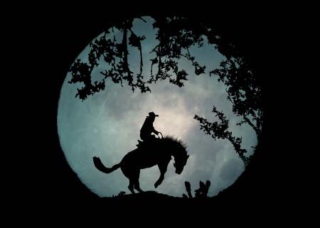 Buckaroo Moon
