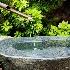 © Denise Woldring PhotoID# 14930586: Water Basin
