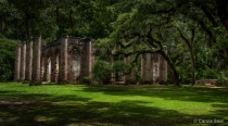 Old Sheldon Church Ruins…...