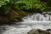 Tremont Stream