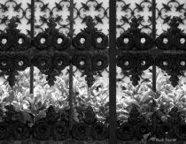 Iron gate, Venice