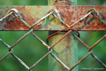 Chain Link Detail